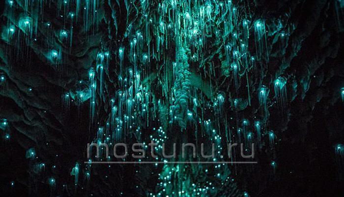 Живой свет пещер Вайтомо